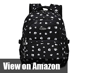stylish backpacks for school and college