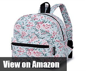 stylish backpacks for school
